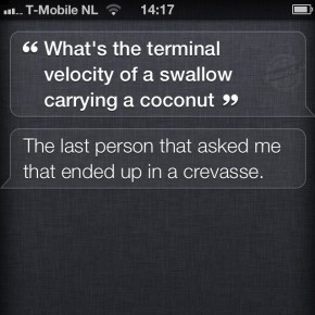 Siri: What is the terminal velocity of a swallow carrying a coconut