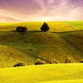 iPhone 5 Wallpaper: beautiful landscape